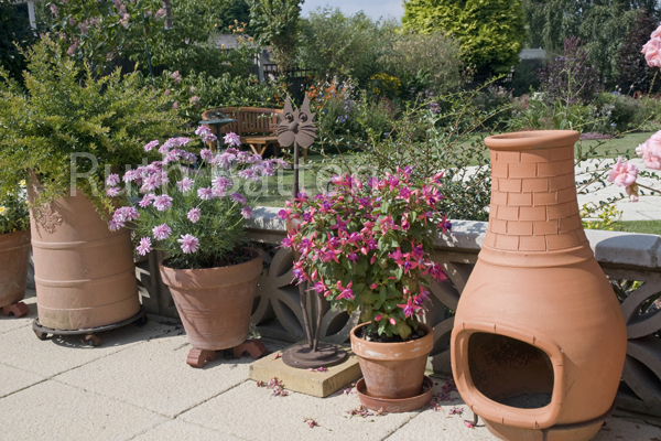 Cat Ornament, terracotta Pots and Chimena, Point Clear Rd garden, Essex - N125